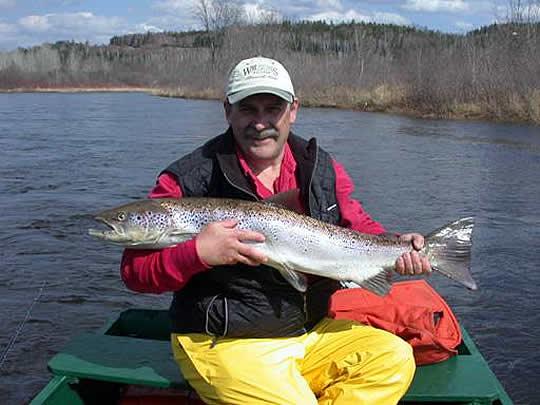 salmon-pool002