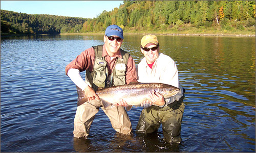 Miramichi Atlantic Salmon