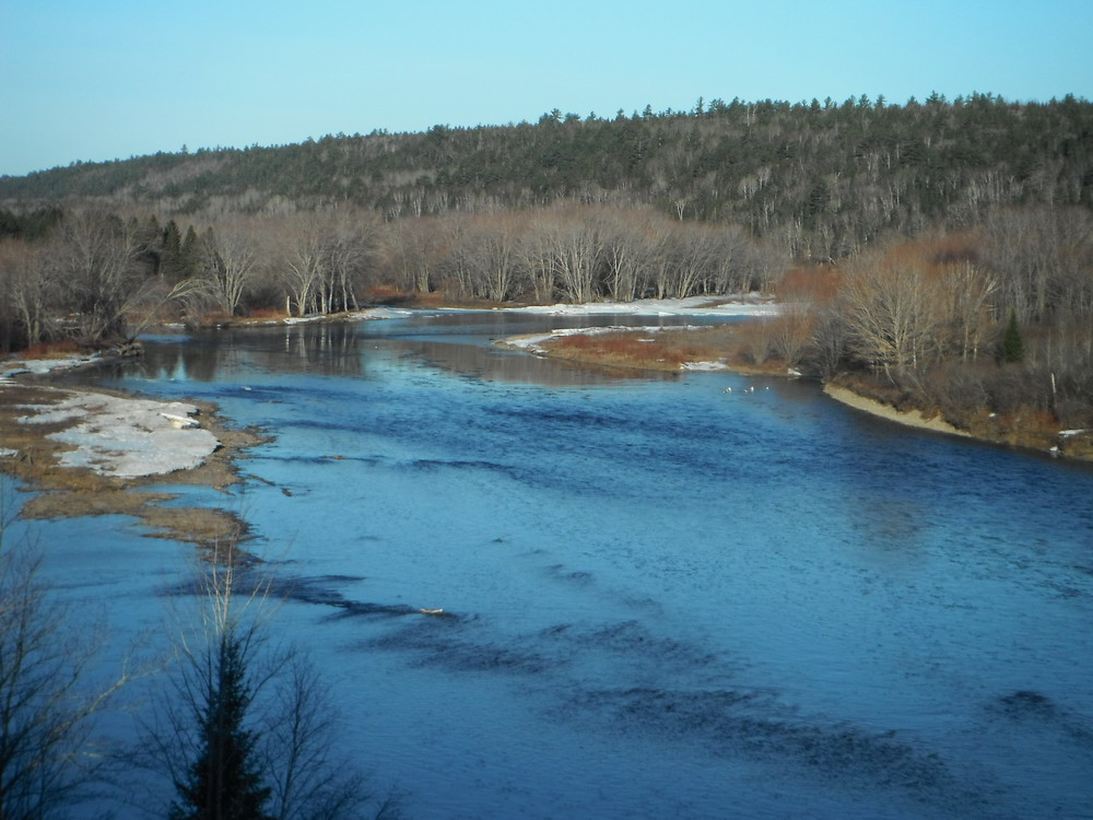 Wilson s miramichi spring fishing report for april 12th for Wilson river fishing report