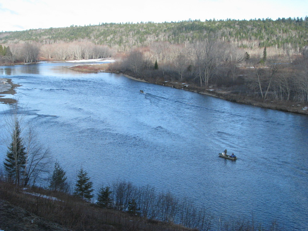 Wilson s spring fishing report april 15th for Wilson river fishing report