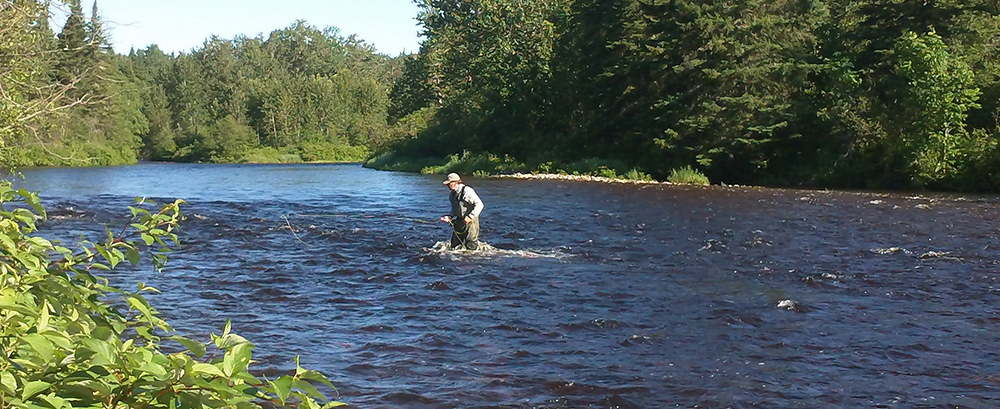 Angler Wading the Causapscal River