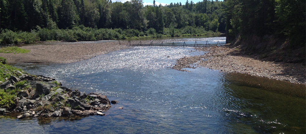Jacquet River Upper Barrier. Photo Geoff Giffin/ASF