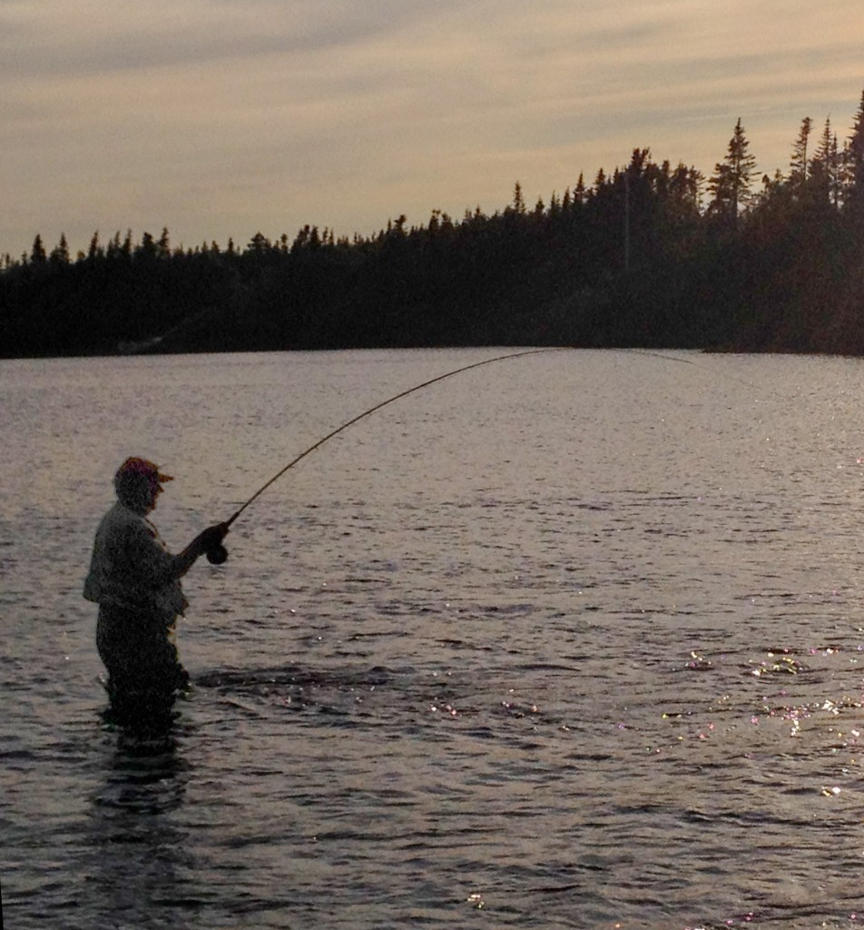 79 year old Mr. Tipple who has been fishing River of Ponds since 1961 is seen spending a quite solitary evening fishing the River last week at the out flow of the first pond on the system.  There are nine such ponds on this system... Hence the name... River of Ponds.