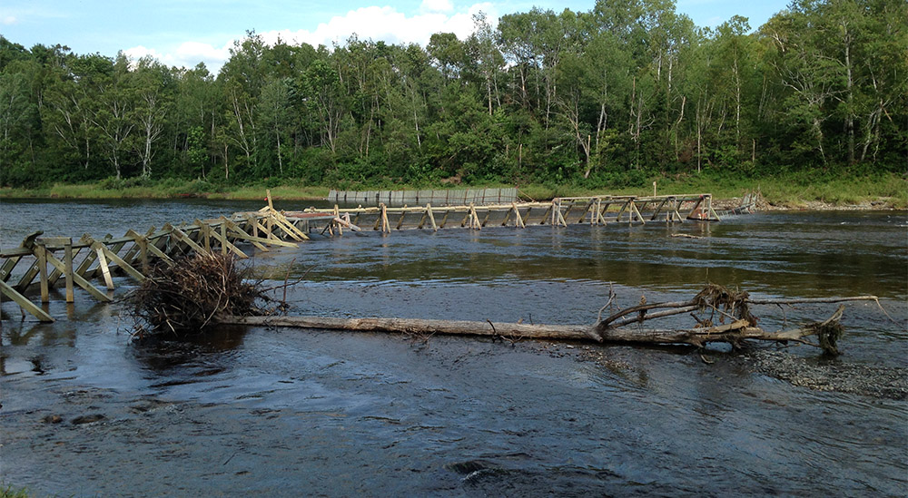 This is the Nashwaak barrier and counting fence which just became operational again this week after major damage from Tropical Storm Arthur.  DFO as well as the Oromocto and Kingsclear First Nations worked very hard to repair the damage to bring the counting facility back into operation.