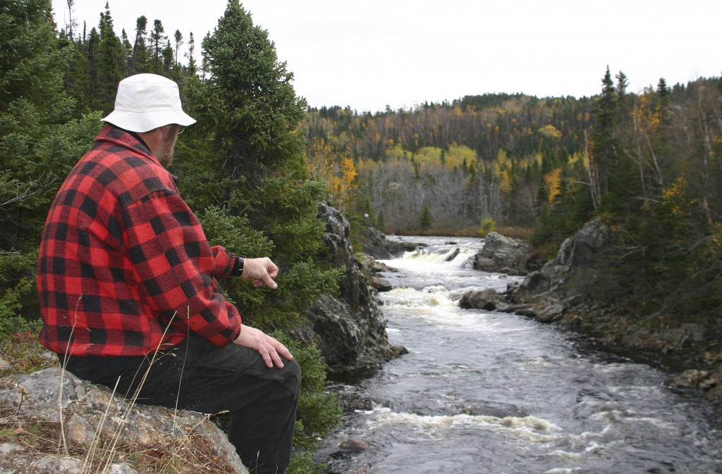 Exploits River numbers are down this year. Yet the river's salmon runs are one of North America's greatest success stories. Photo Fred Parsons