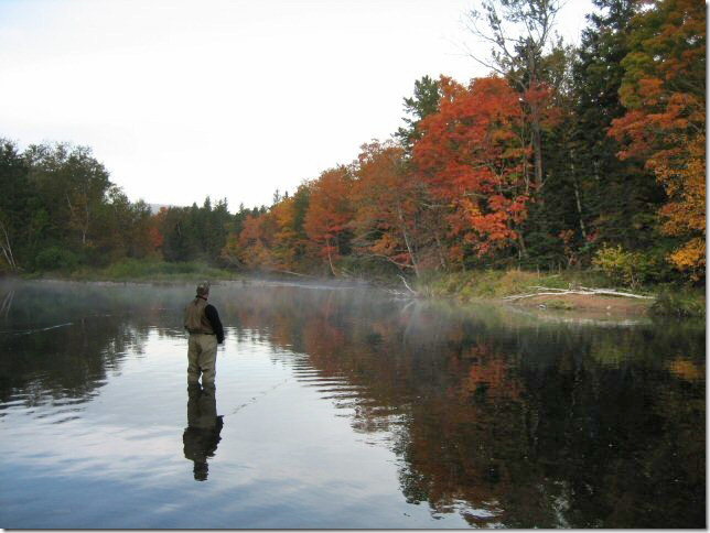 Margaree River, October - photo Gordon McGee