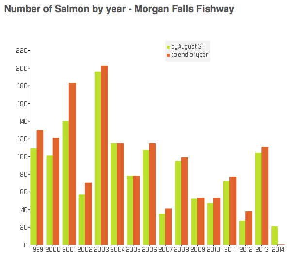 Returns at the Morgan Falls Fishway to end of August are cause for concern. Also, while this river is used by DFO as a predictor for runs in Nova Scotia's outer coast rivers, questions need to be asked as to whether it is representative.