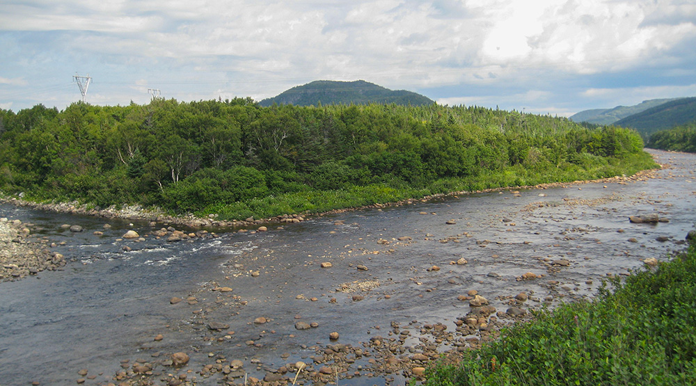 Forks Pool, where Bottom Brook (left) flows into Southwest Brook. Western Newfoundland. photo Don Ivany/ASF