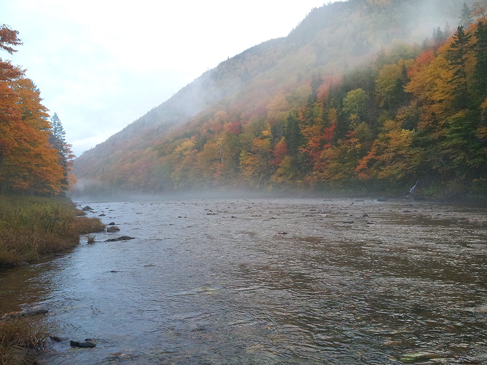 Northeast Margaree River, taken Thurs., Oct. 9 at 7:40 am
