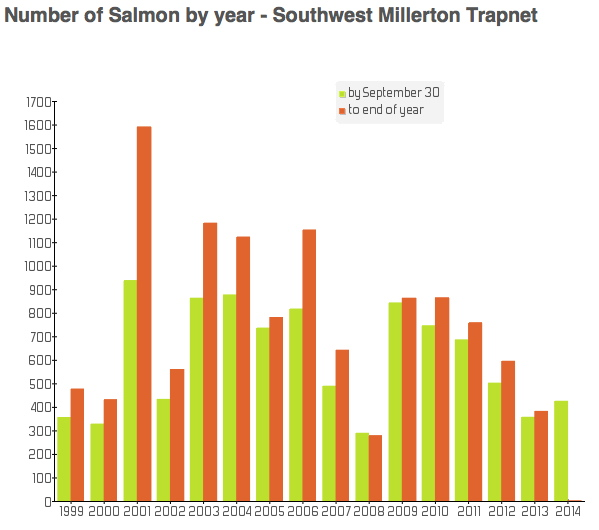 Large salmon numbers at the Millerton Trapnet on the Southwest Miramichi as of Sept. 30, 2014
