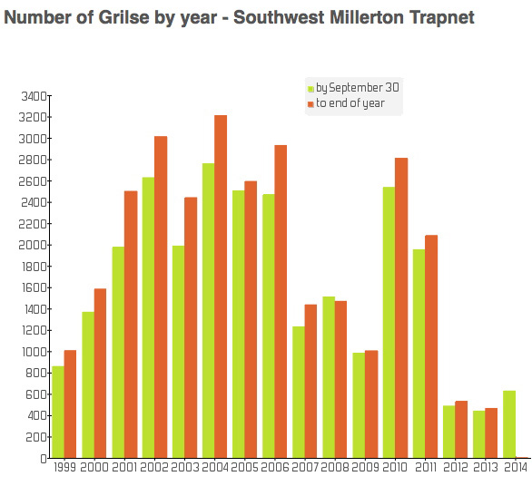 Count of grilse numbers at the Millerton Trap through the past generation.