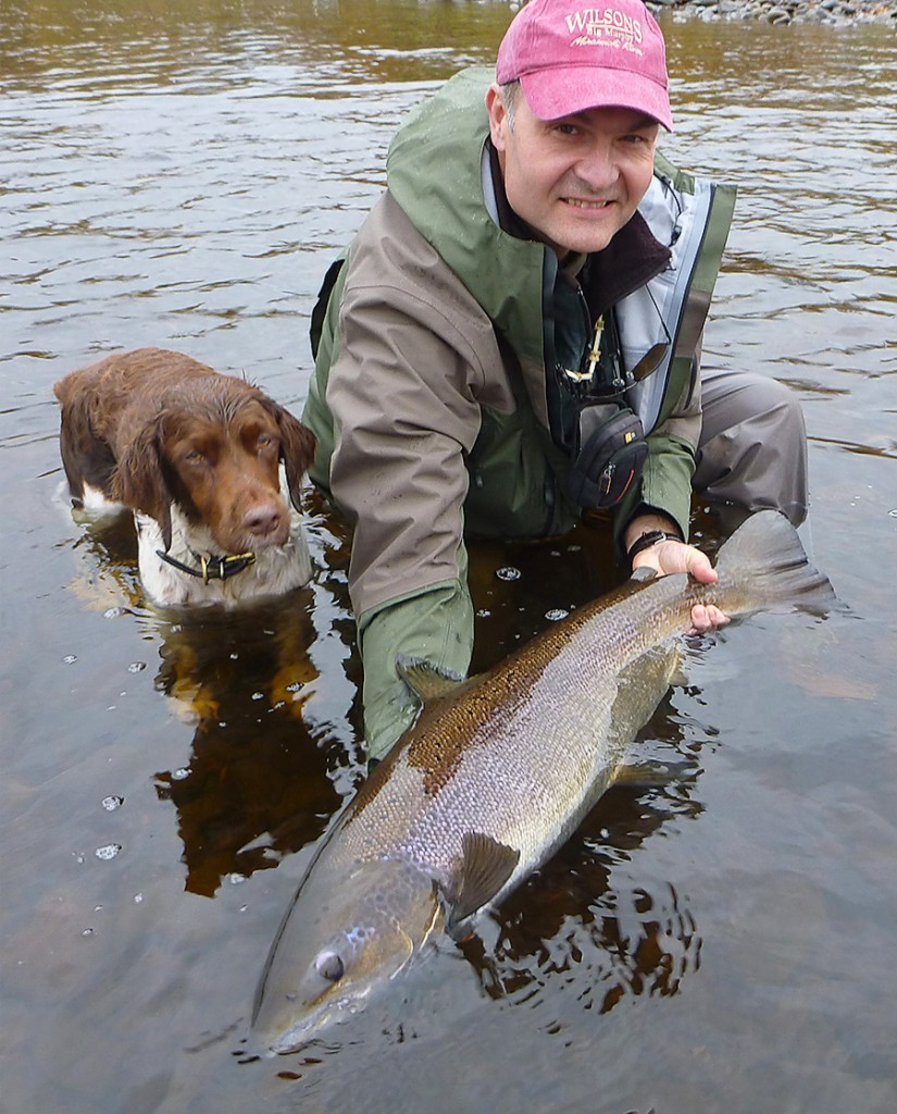 C. D. Clarke releases a beautiful fall Atlantic salmon this September on the Miramichi