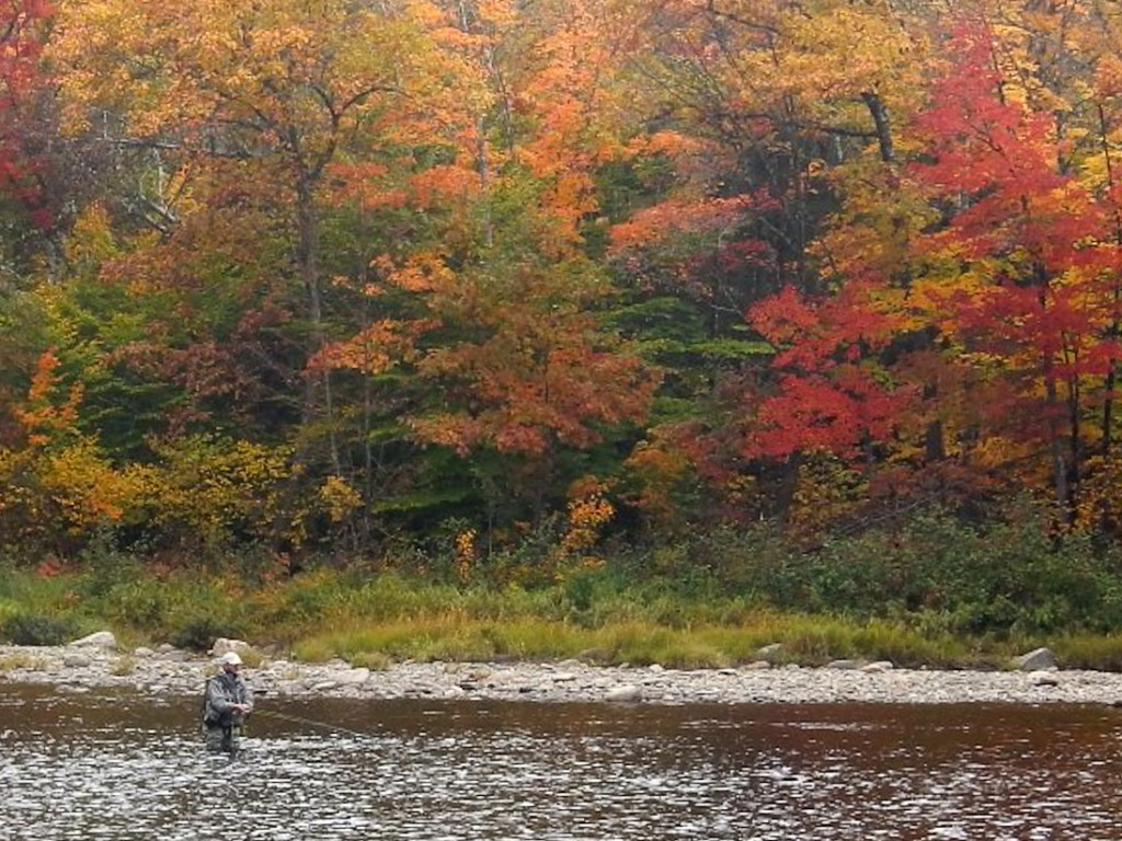8 Oct., 2014 on the Miramichi - the leaves still on the trees. Paul Elson