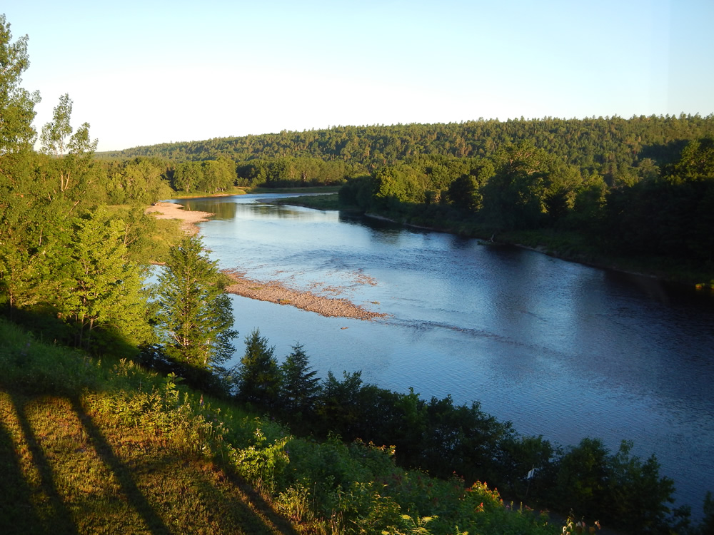 Wilson s miramichi report for july 19 for Wilson river fishing report