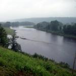 Atlantic Salmon Conditions