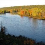 Atlantic Salmon October