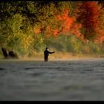 Fall Miramichi Salmon