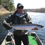 healthy-spring-salmon