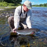 miramichi-july-atlantic-salmon