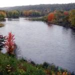 October Atlantic Salmon