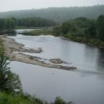 September Salmon Pool