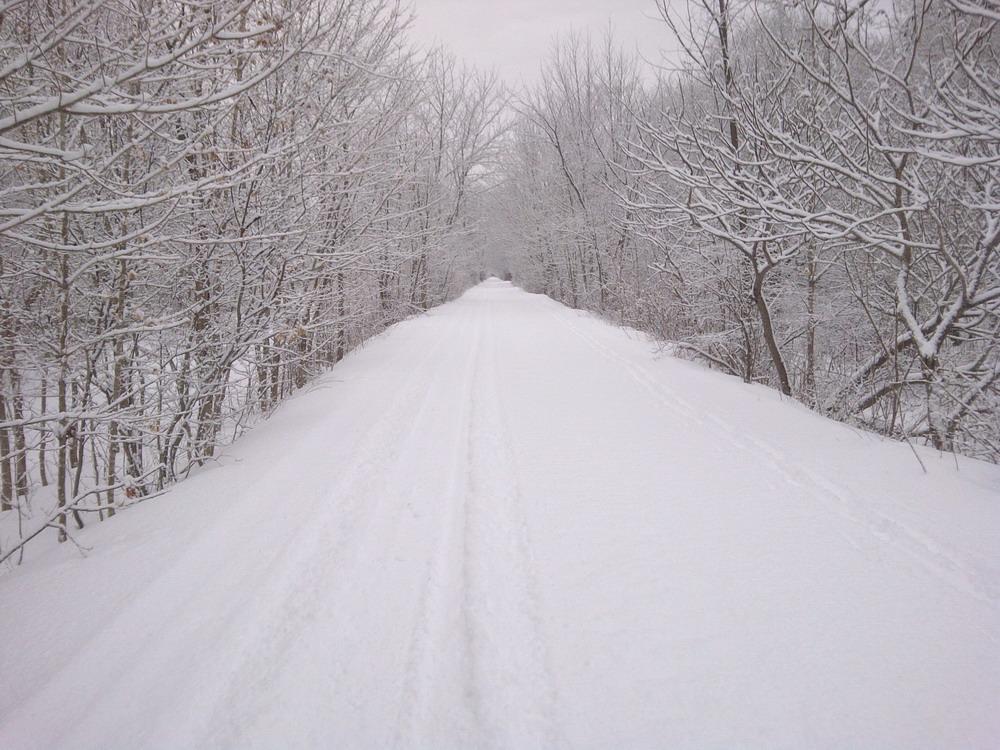trail pics jan 17 004_resize