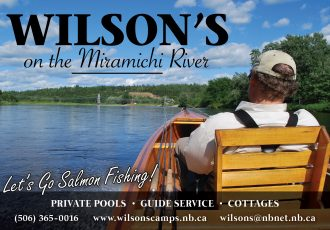 Fall Atlantic Salmon  Miramichi River