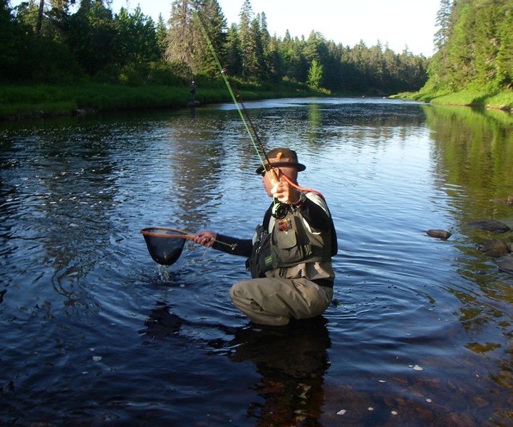 new-brunswick-sea-run-brook-trout